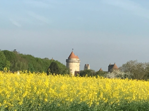 Chateau de Blandy les Tours au printemps
