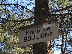 mare de bouligny