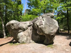 randonnée pédestre Gorge d'appremont